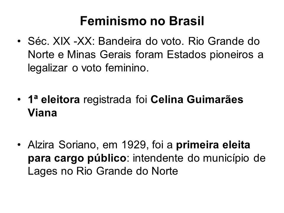 Feminismo no Brasil Séc.XIX -XX: Bandeira do voto.