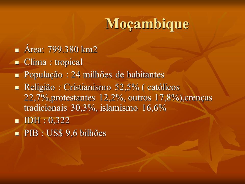 Moçambique Moçambique Área: 799.380 km2 Área: 799.380 km2 Clima : tropical Clima : tropical População : 24 milhões de habitantes População : 24 milhõe