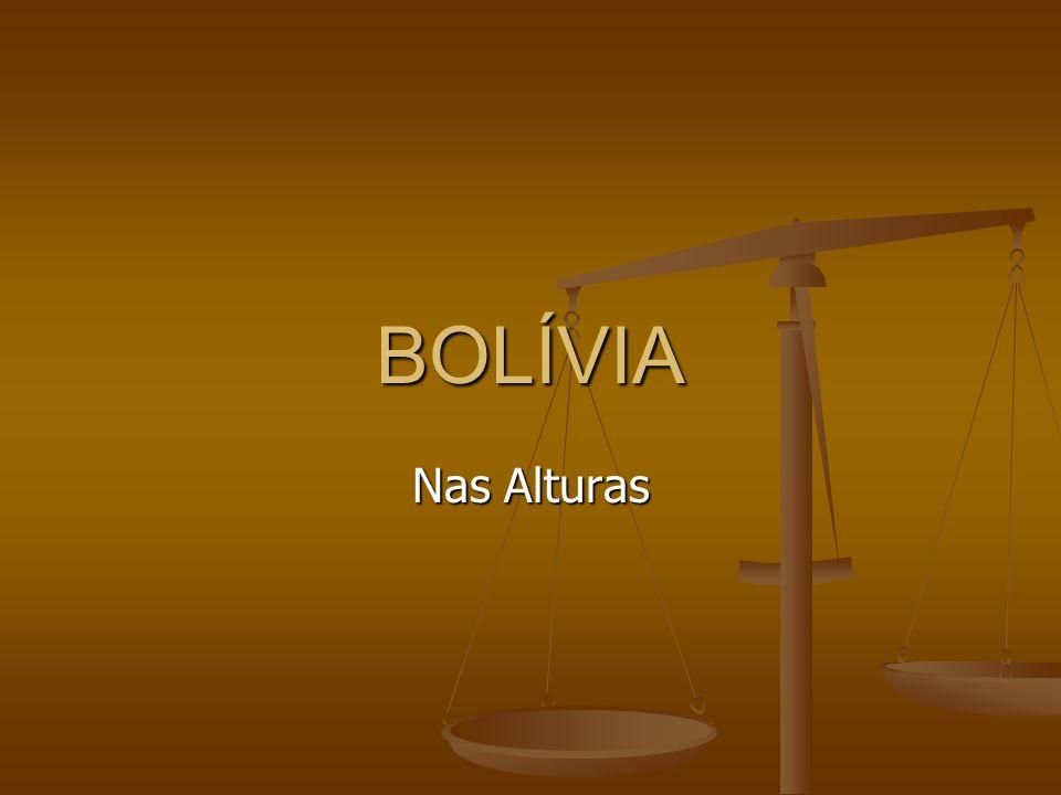 Bolívia Dados Gerais; Dados Gerais; Área : 1.098.581 km2 Área : 1.098.581 km2 População : 10,1 milhões População : 10,1 milhões Composição étnica : quichuas 30%,aimarás 25%,eurameríndios 15 %,europeus ibéricos 15 %, outros 15% Composição étnica : quichuas 30%,aimarás 25%,eurameríndios 15 %,europeus ibéricos 15 %, outros 15% PIB : US$ 19,8 bilhões PIB : US$ 19,8 bilhões Expectativa de vida;66 anos Expectativa de vida;66 anos IDH : 0,663 IDH : 0,663