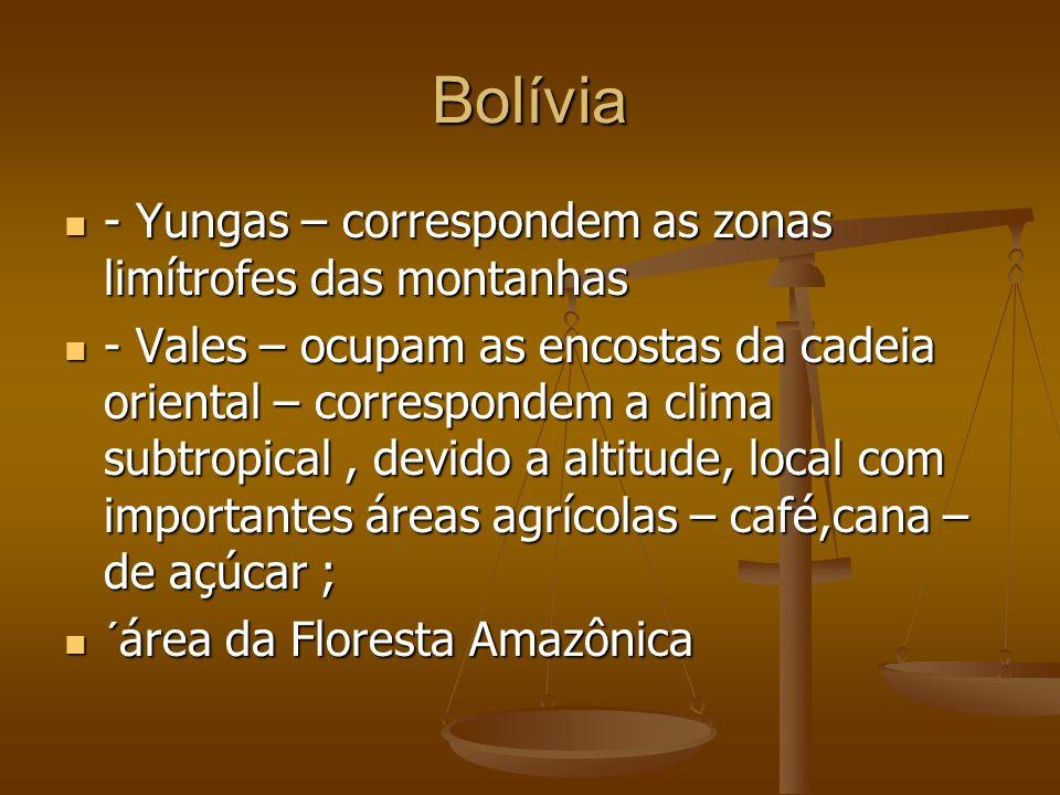 Bolívia - Yungas – correspondem as zonas limítrofes das montanhas - Yungas – correspondem as zonas limítrofes das montanhas - Vales – ocupam as encostas da cadeia oriental – correspondem a clima subtropical, devido a altitude, local com importantes áreas agrícolas – café,cana – de açúcar ; - Vales – ocupam as encostas da cadeia oriental – correspondem a clima subtropical, devido a altitude, local com importantes áreas agrícolas – café,cana – de açúcar ; ´área da Floresta Amazônica ´área da Floresta Amazônica