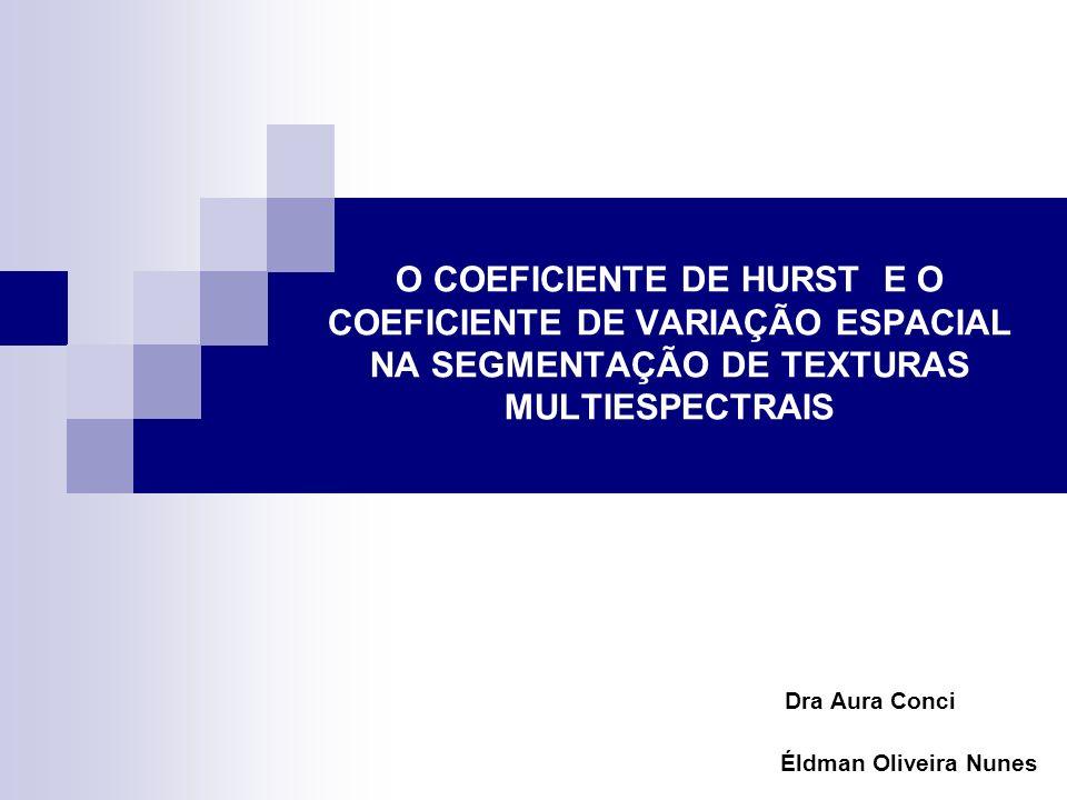 O COEFICIENTE DE HURST E O COEFICIENTE DE VARIAÇÃO ESPACIAL NA SEGMENTAÇÃO DE TEXTURAS MULTIESPECTRAIS Dra Aura Conci Éldman Oliveira Nunes