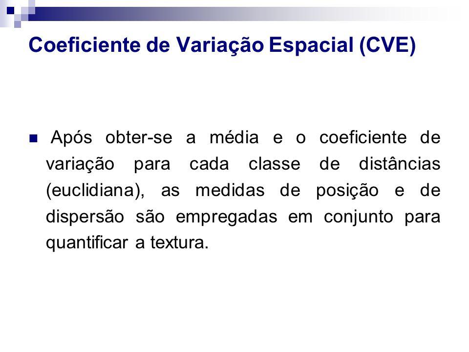 Coeficiente de Variação Espacial (CVE) Após obter-se a média e o coeficiente de variação para cada classe de distâncias (euclidiana), as medidas de po