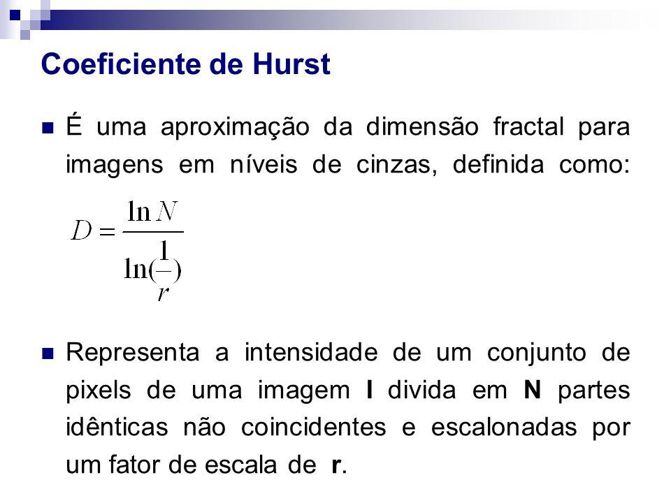 Coeficiente de Hurst É uma aproximação da dimensão fractal para imagens em níveis de cinzas, definida como: Representa a intensidade de um conjunto de