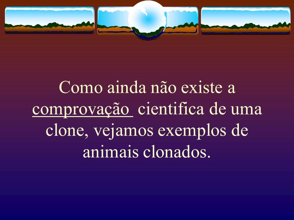 Como ainda não existe a comprovação cientifica de uma clone, vejamos exemplos de animais clonados.