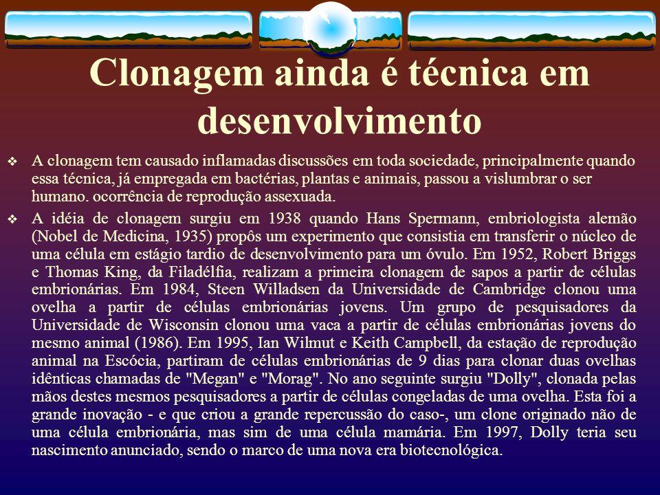 Clonagem ainda é técnica em desenvolvimento A clonagem tem causado inflamadas discussões em toda sociedade, principalmente quando essa técnica, já emp