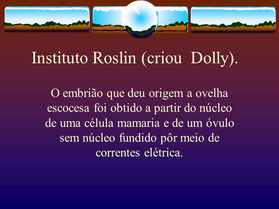 Instituto Roslin (criou Dolly). O embrião que deu origem a ovelha escocesa foi obtido a partir do núcleo de uma célula mamaria e de um óvulo sem núcle