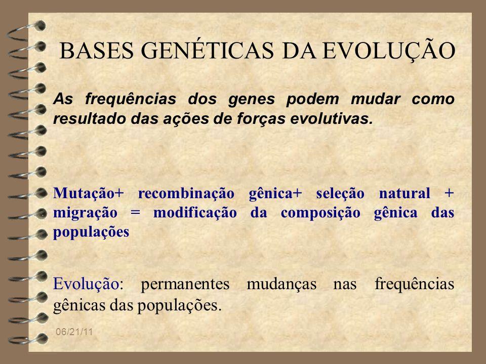 06/21/11 BASES GENÉTICAS DA EVOLUÇÃO As frequências dos genes podem mudar como resultado das ações de forças evolutivas. Mutação+ recombinação gênica+