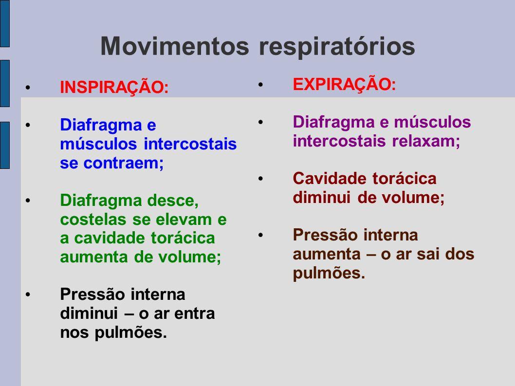 Movimentos respiratórios Movimento involuntário; Também chamado VENTILAÇÃO PULMONAR;
