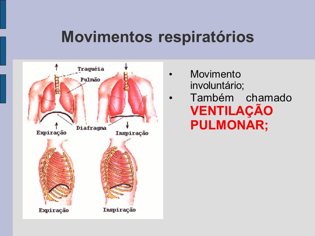 Movimentos respiratórios /home/anavera/Imagens/movimentos_respir atorios.jpg