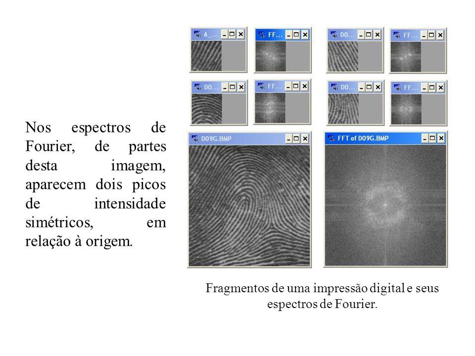 Nos espectros de Fourier, de partes desta imagem, aparecem dois picos de intensidade simétricos, em relação à origem. Fragmentos de uma impressão digi