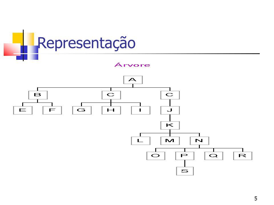 5 Representação