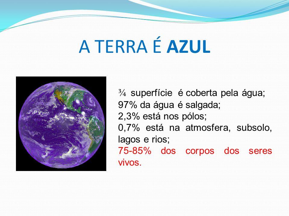 A TERRA É AZUL ¾ superfície é coberta pela água; 97% da água é salgada; 2,3% está nos pólos; 0,7% está na atmosfera, subsolo, lagos e rios; 75-85% dos