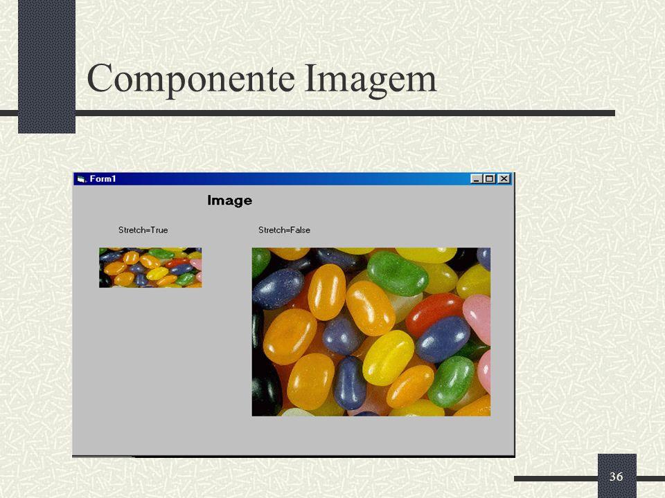 36 Componente Imagem