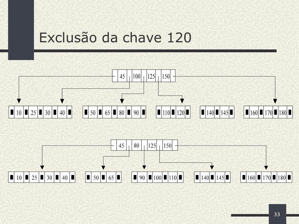 33 Exclusão da chave 120