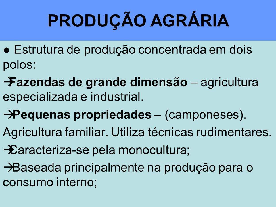 PRODUÇÃO AGRÁRIA Estrutura de produção concentrada em dois polos: Fazendas de grande dimensão – agricultura especializada e industrial.