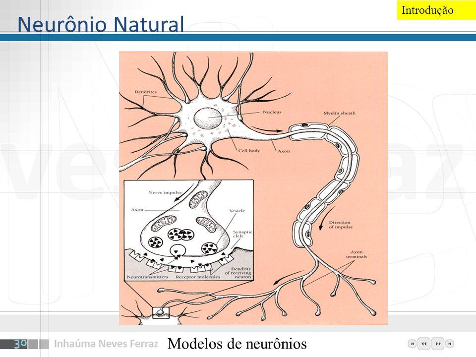 Neurônio Natural Modelos de neurônios 30 Introdução