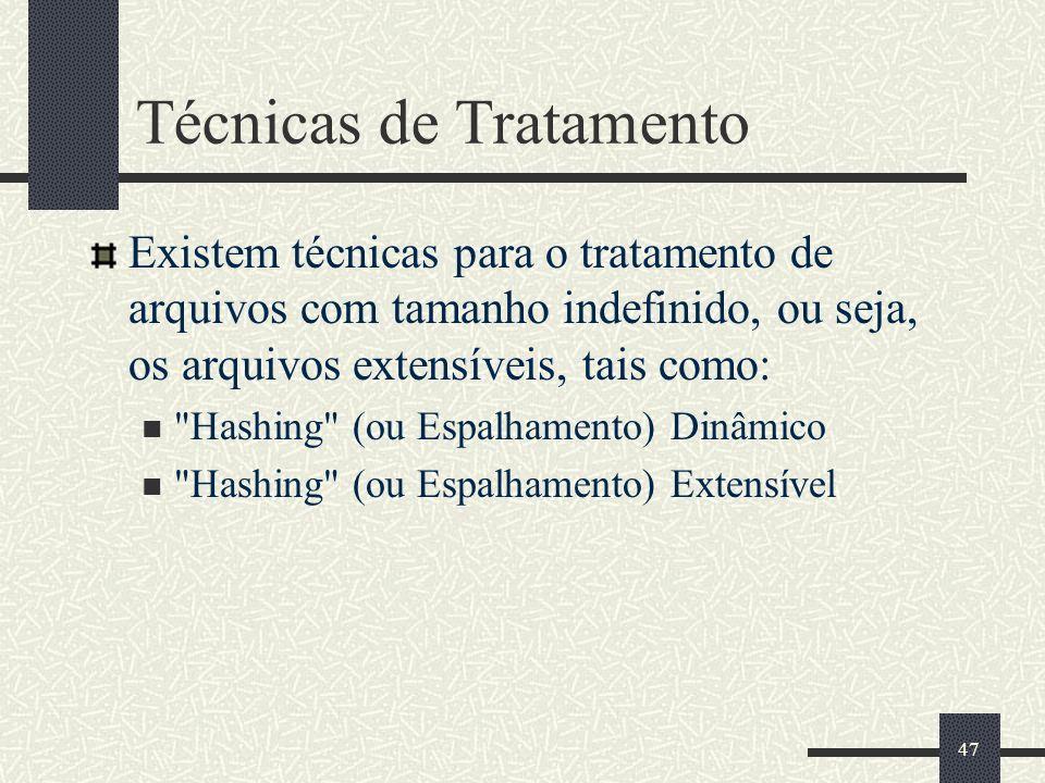 47 Técnicas de Tratamento Existem técnicas para o tratamento de arquivos com tamanho indefinido, ou seja, os arquivos extensíveis, tais como: