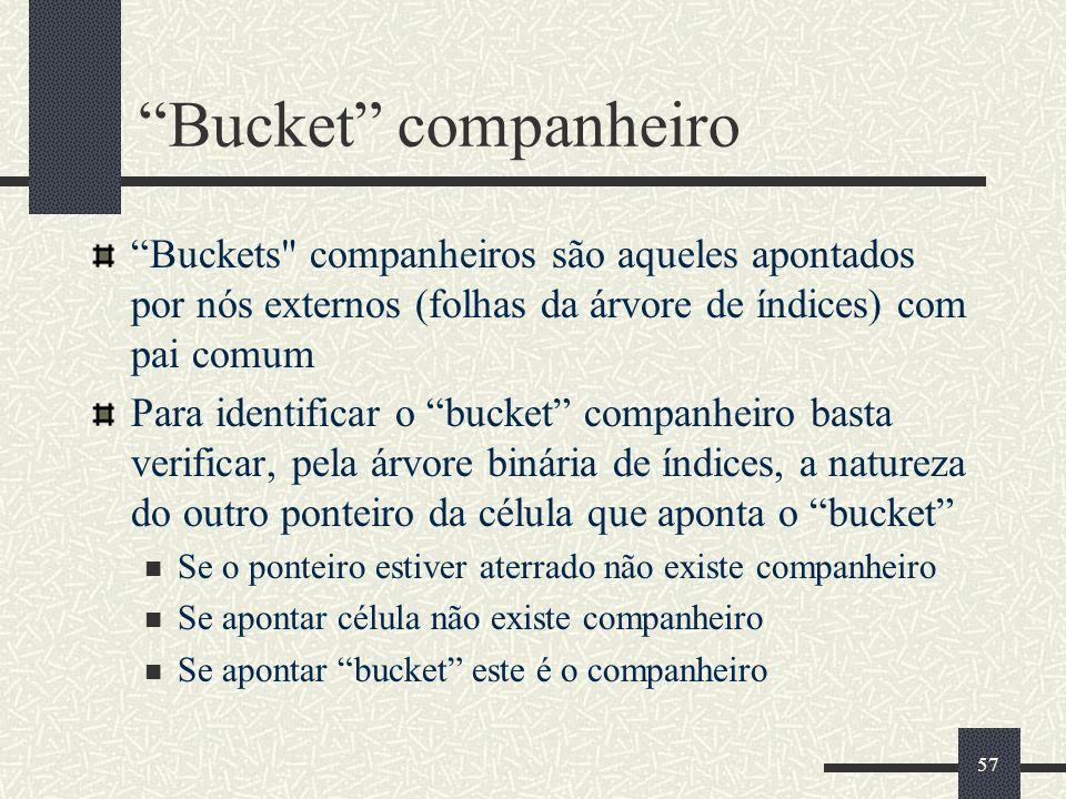 57 Bucket companheiro Buckets