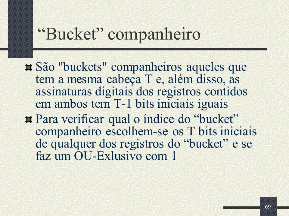 69 Bucket companheiro São