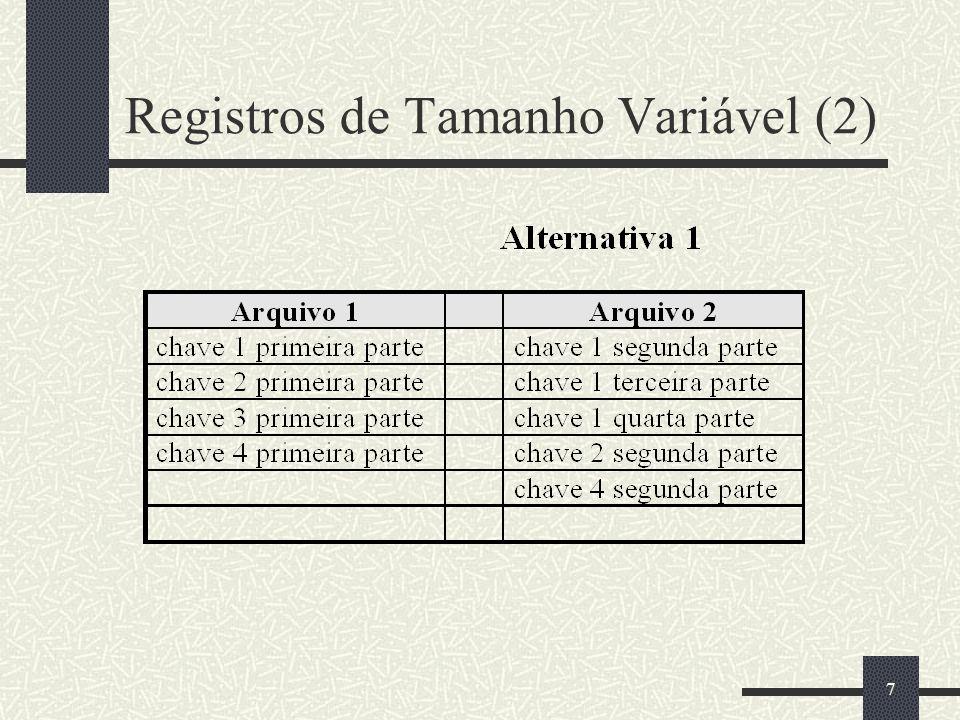 7 Registros de Tamanho Variável (2)