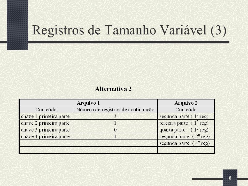 8 Registros de Tamanho Variável (3)