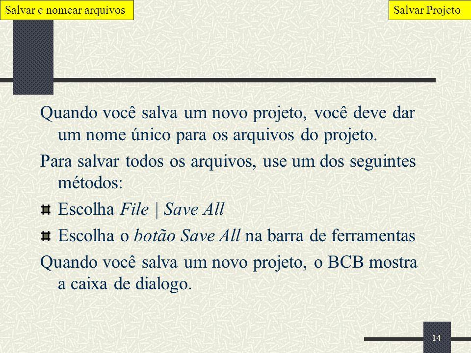 14 Quando você salva um novo projeto, você deve dar um nome único para os arquivos do projeto. Para salvar todos os arquivos, use um dos seguintes mét
