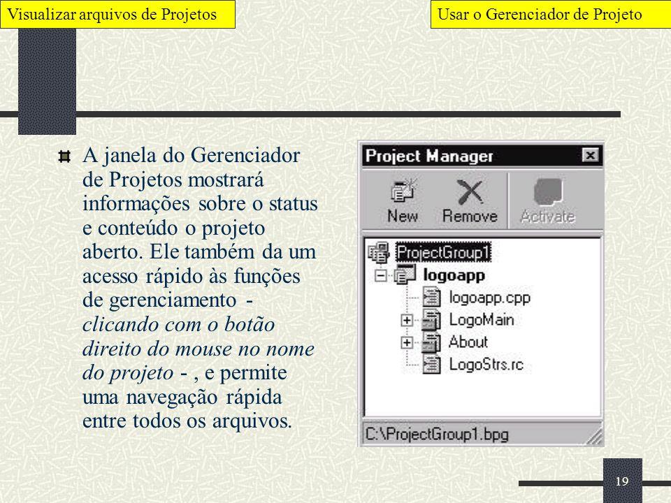 19 A janela do Gerenciador de Projetos mostrará informações sobre o status e conteúdo o projeto aberto. Ele também da um acesso rápido às funções de g