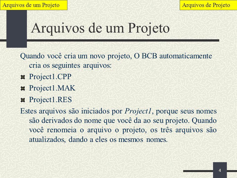 4 Arquivos de um Projeto Quando você cria um novo projeto, O BCB automaticamente cria os seguintes arquivos: Project1.CPP Project1.MAK Project1.RES Es