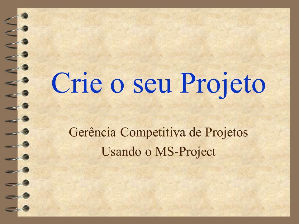 Crie o seu Projeto Gerência Competitiva de Projetos Usando o MS-Project