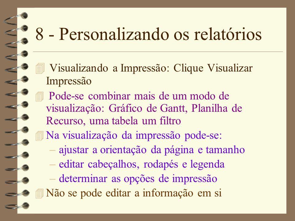 8 - Personalizando os relatórios 4 Visualizando a Impressão: Clique Visualizar Impressão 4 Pode-se combinar mais de um modo de visualização: Gráfico d