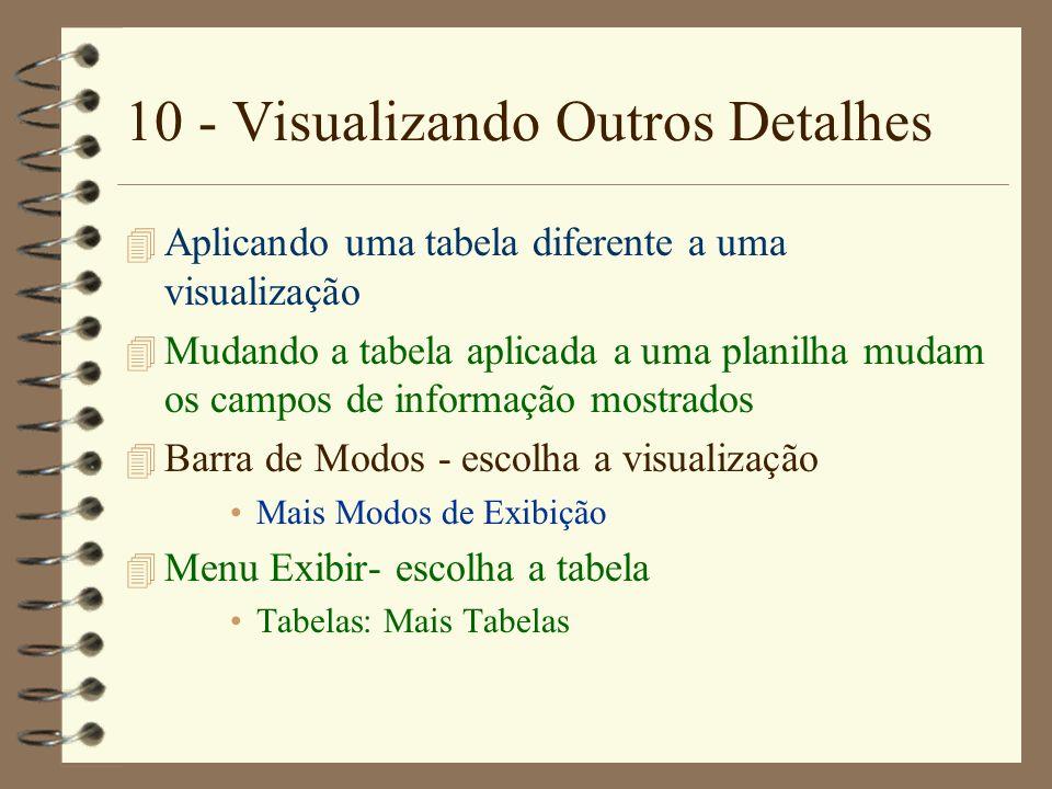 10 - Visualizando Outros Detalhes 4 Aplicando uma tabela diferente a uma visualização 4 Mudando a tabela aplicada a uma planilha mudam os campos de in