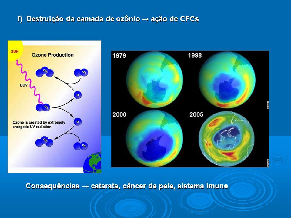 f) Destruição da camada de ozônio ação de CFCs Consequências catarata, câncer de pele, sistema imune