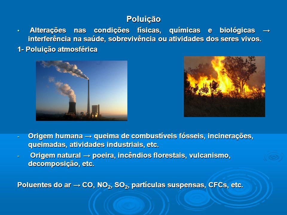 Poluição Alterações nas condições físicas, químicas e biológicas interferência na saúde, sobrevivência ou atividades dos seres vivos.