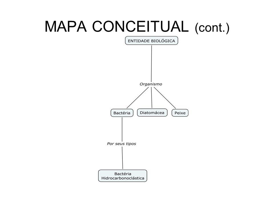 MAPA CONCEITUAL (cont.)
