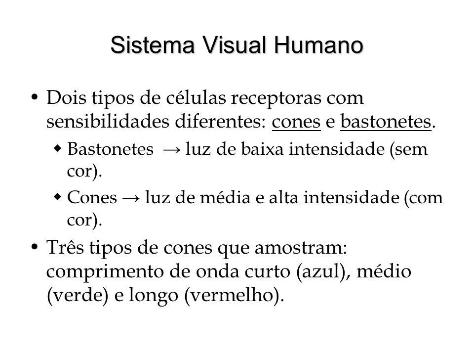 Sistema Visual Humano Dois tipos de células receptoras com sensibilidades diferentes: cones e bastonetes.