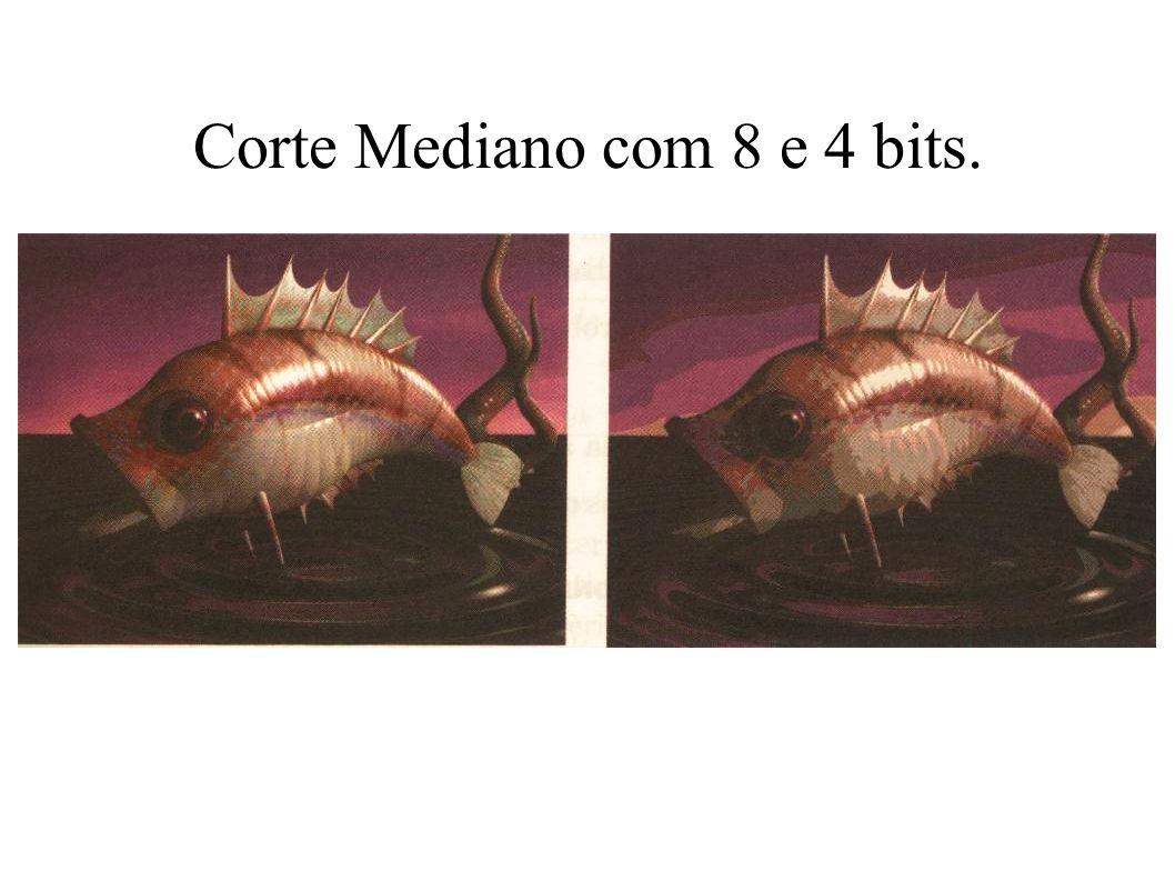 Corte Mediano com 8 e 4 bits.