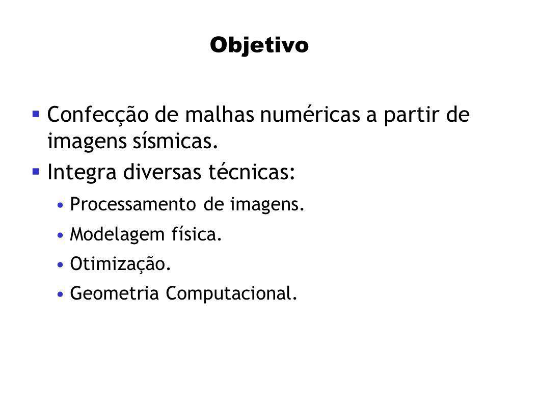 Objetivo Confecção de malhas numéricas a partir de imagens sísmicas. Integra diversas técnicas: Processamento de imagens. Modelagem física. Otimização