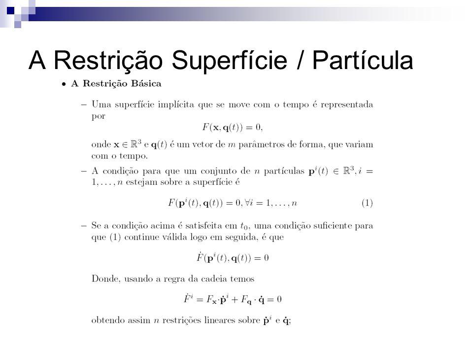 A Restrição Superfície / Partícula