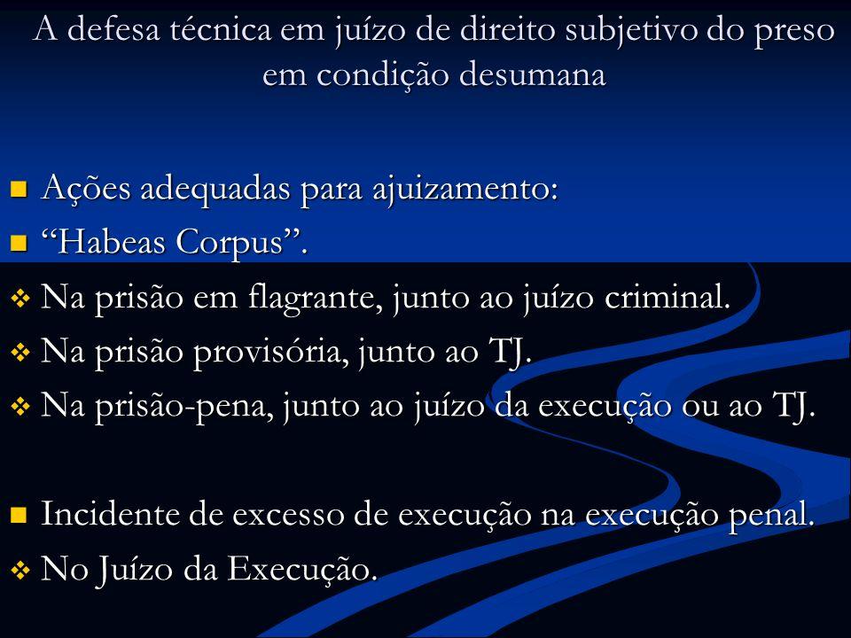 A defesa técnica em juízo de direito subjetivo do preso em condição desumana Ações adequadas para ajuizamento: Ações adequadas para ajuizamento: Habea
