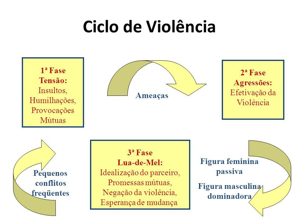 Ciclo de Violência 1ª Fase Tensão: Insultos, Humilhações, Provocações Mútuas 2ª Fase Agressões: Efetivação da Violência 3ª Fase Lua-de-Mel: Idealizaçã