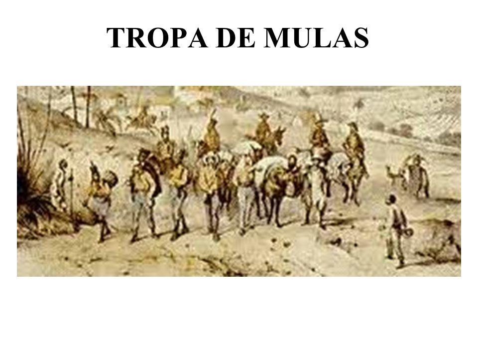 TROPA DE MULAS