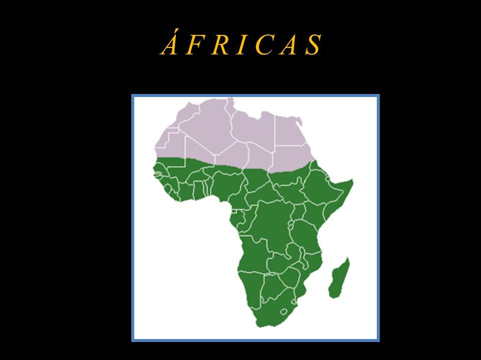 ÁFRICA DO NORTE Limitada a: - Norte pelo Mar Mediterrâneo; e - Noroeste pelo Oceano Atlântico; Abrangida na maior parte pelo deserto do Saara.