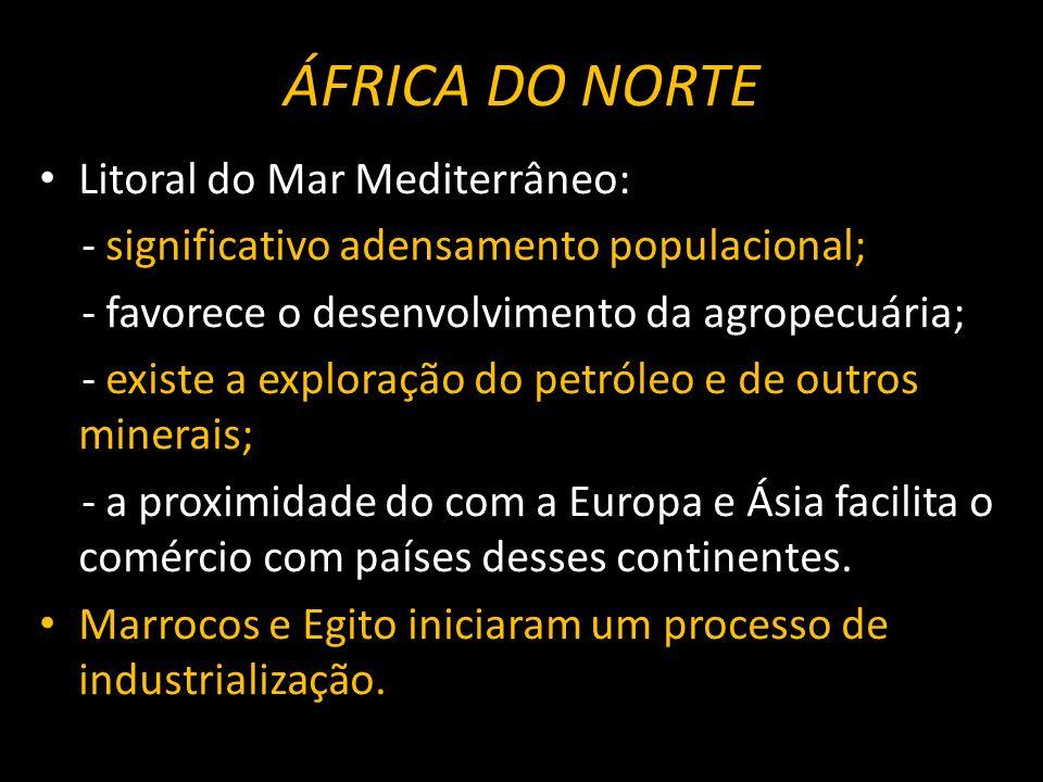 ÁFRICA DO NORTE Litoral do Mar Mediterrâneo: - significativo adensamento populacional; - favorece o desenvolvimento da agropecuária; - existe a explor