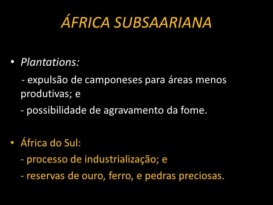 ÁFRICA SUBSAARIANA Plantations: - expulsão de camponeses para áreas menos produtivas; e - possibilidade de agravamento da fome. África do Sul: - proce
