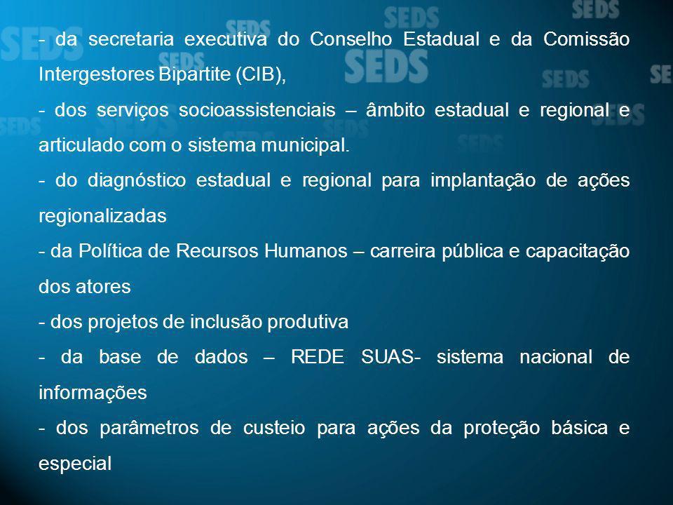 - da secretaria executiva do Conselho Estadual e da Comissão Intergestores Bipartite (CIB), - dos serviços socioassistenciais – âmbito estadual e regi