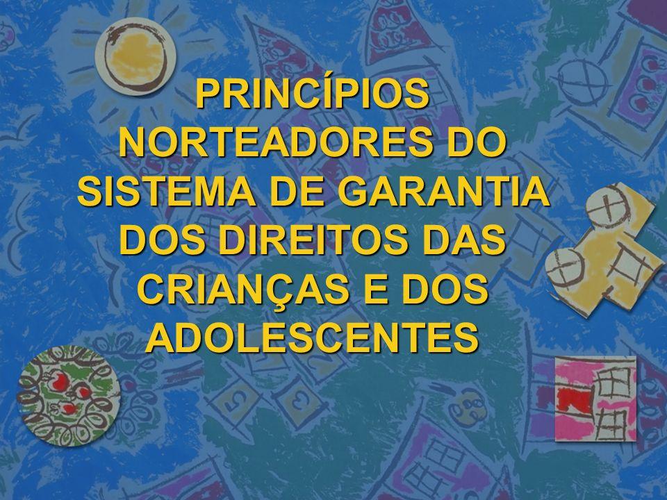 GESTÃO PARTICIPATIVA E DESCENTRALIZAÇÃO PRIORIDADE ABSOLUTA PROTEÇÃO INTEGRAL ARTIGO 100 PARÁGRAFO ÚNICO