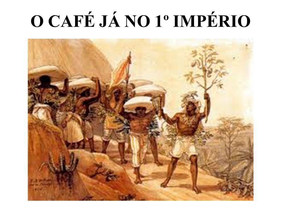 O CAFÉ JÁ NO 1º IMPÉRIO