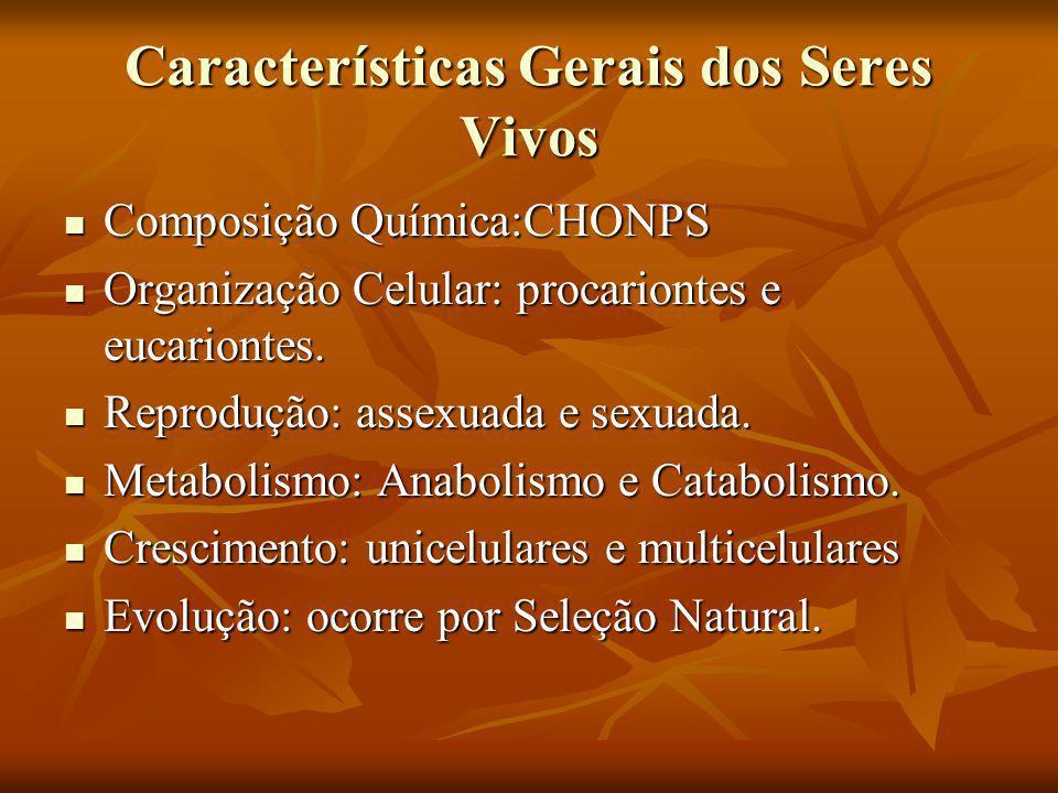 Características Gerais dos Seres Vivos Composição Química:CHONPS Composição Química:CHONPS Organização Celular: procariontes e eucariontes. Organizaçã