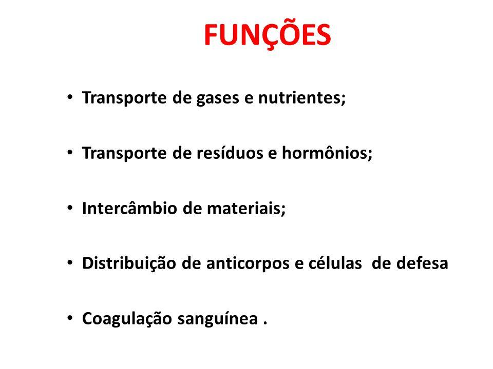 FUNÇÕES Transporte de gases e nutrientes; Transporte de resíduos e hormônios; Intercâmbio de materiais; Distribuição de anticorpos e células de defesa Coagulação sanguínea.