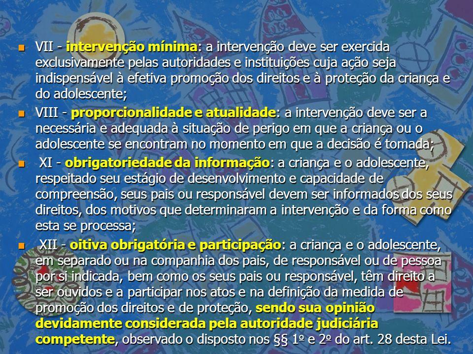 n VII - intervenção mínima: a intervenção deve ser exercida exclusivamente pelas autoridades e instituições cuja ação seja indispensável à efetiva pro